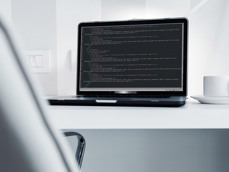 leistung webentwicklung